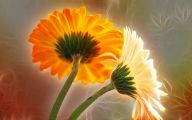 Flower Wallpaper 3D 15 Cool Wallpaper