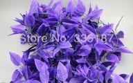 Purple Flowers Flower Decoration 24 Desktop Background