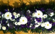 Purple Flowers In Funeral 20 Wide Wallpaper