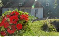 Red Flowers In Castle 29 Desktop Background