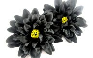 The Black Flower  19 Background Wallpaper