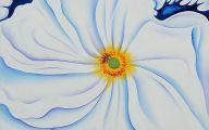 White Flowers Canvass 13 High Resolution Wallpaper