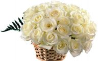 White Flowers In Basket 15 Desktop Wallpaper