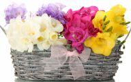 White Flowers In Basket 8 Free Hd Wallpaper