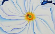 White Flowers Paintings 13 Cool Wallpaper