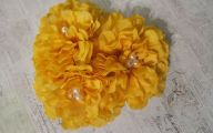 Yellow Flowers Hair Clip 18 Background