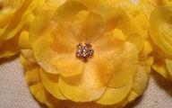 Yellow Flowers Hair Clip 2 Free Hd Wallpaper