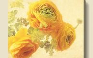 Yellow Flowers In Canvass 10 Cool Wallpaper