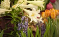 Easter Flower 10 Desktop Wallpaper