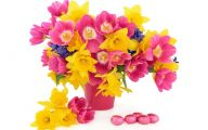 Easter Flower 17 Wide Wallpaper