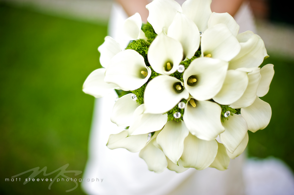 Green flowers wedding 13 hd wallpaper hdflowerwallpaper green flowers wedding 13 hd wallpaper mightylinksfo Images