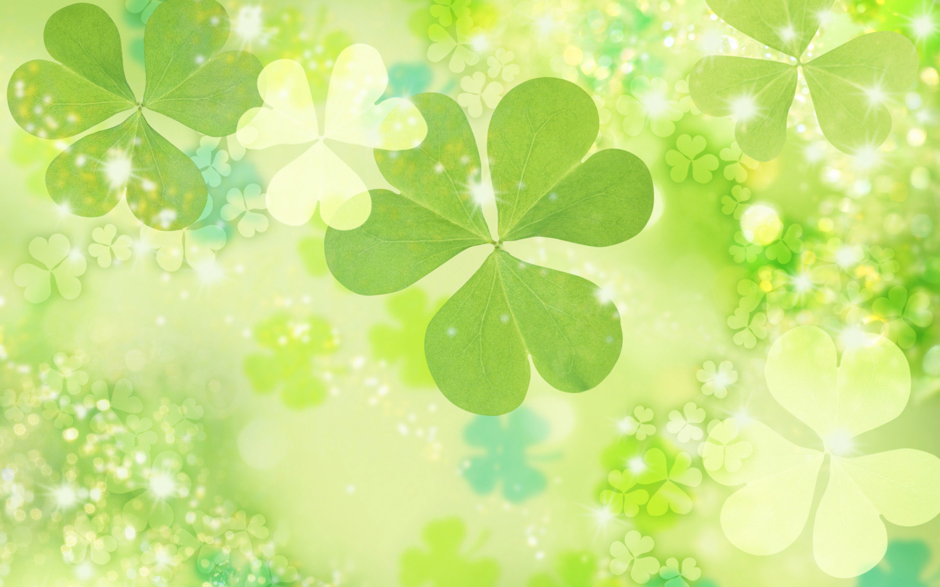 Pictures Of Green Flowers 24 Free Hd Wallpaper