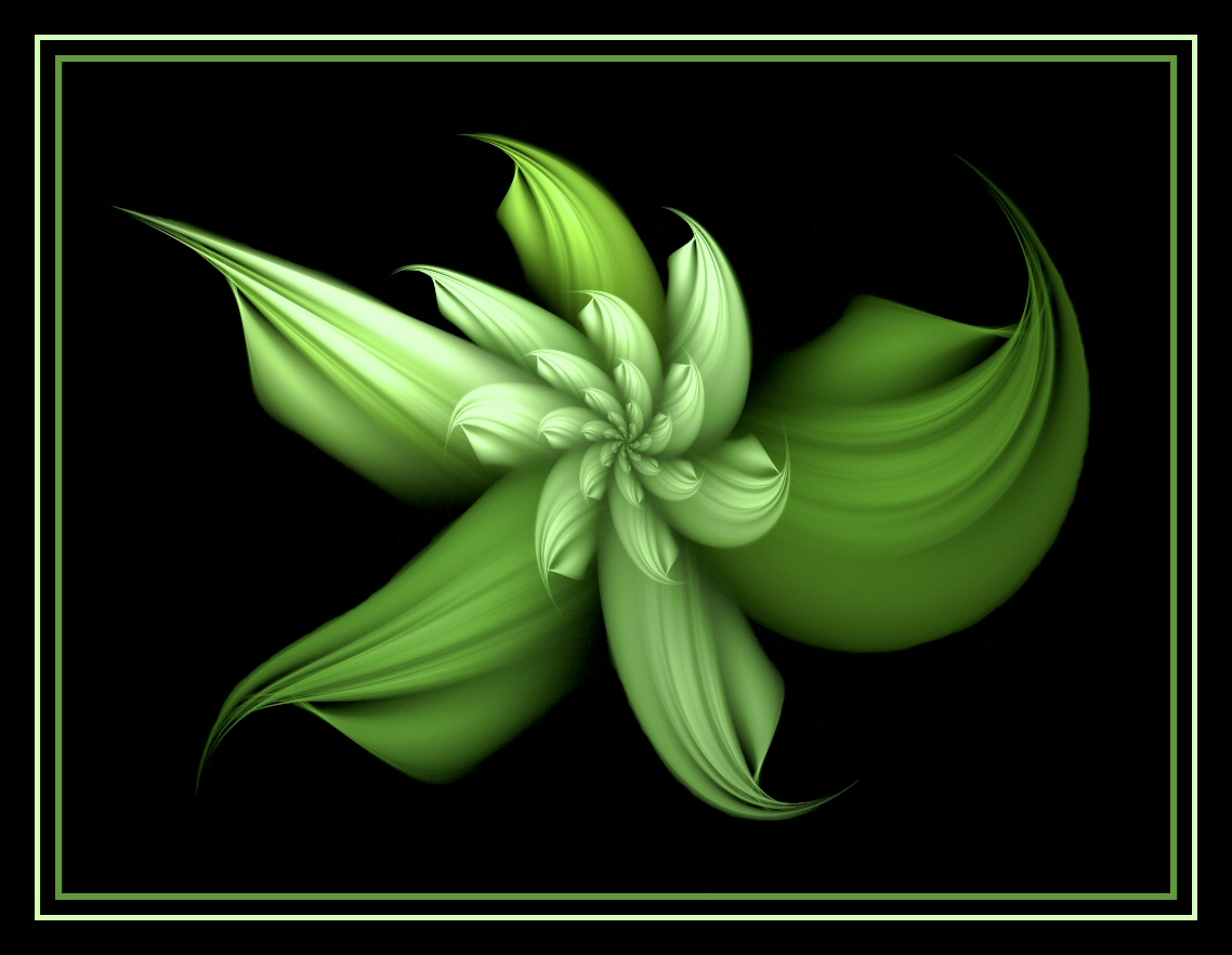 Pictures Of Green Flowers 4 Wide Wallpaper
