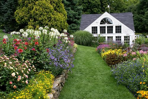 White flower farm perennials 33 background hdflowerwallpaper white flower farm perennials free wallpaper mightylinksfo