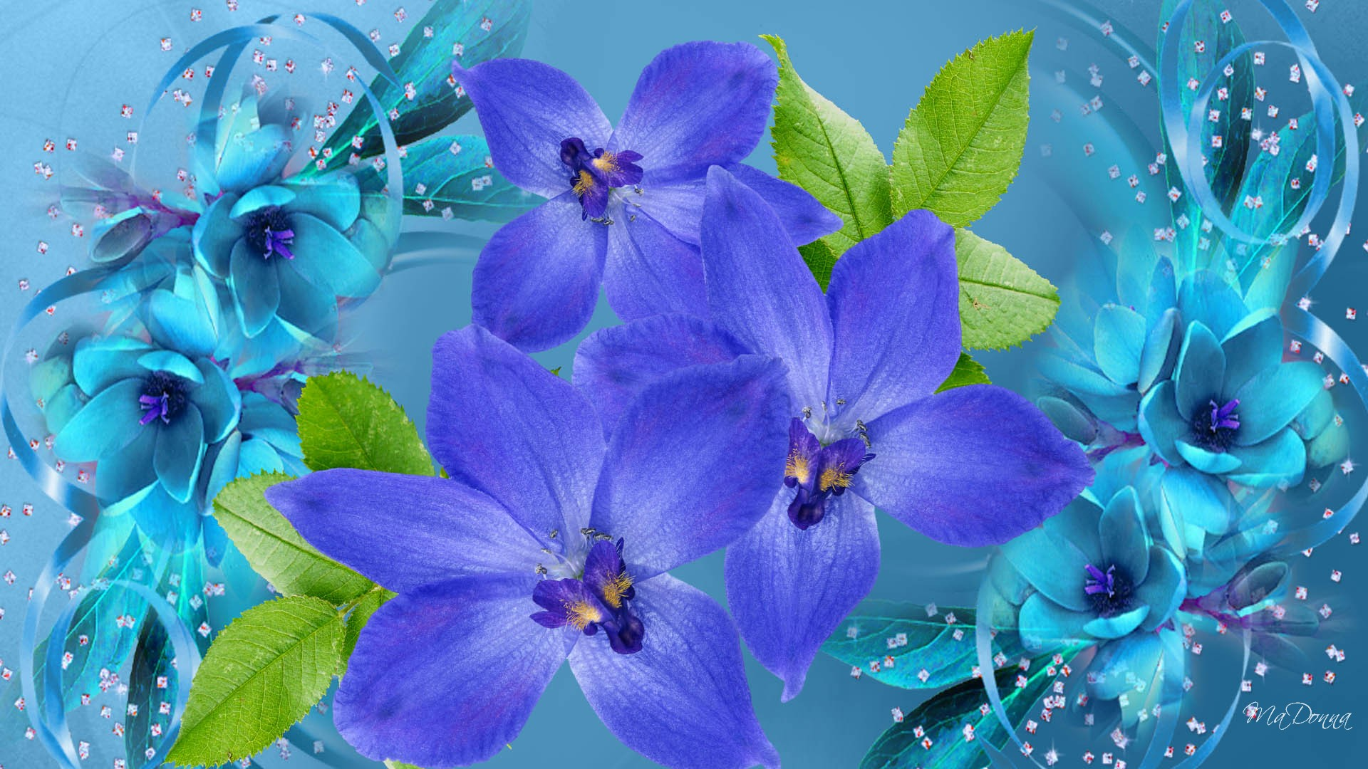 gallery for purple and blue flower wallpaper