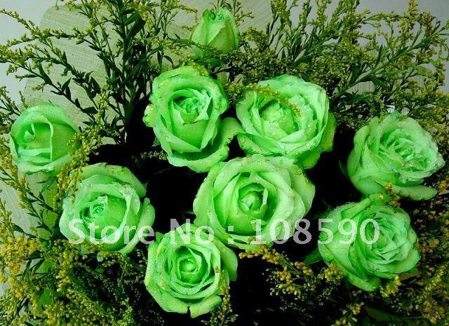 Green Flowers Names 1 Hd Wallpaper - HdFlowerWallpaper.com