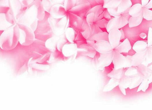 Pink flowers background 14 cool wallpaper hdflowerwallpaper pink flowers background hd wallpaper mightylinksfo