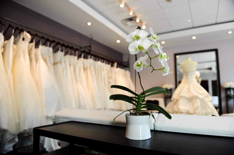 White Flower Boutique 16 Desktop Wallpaper Hdflowerwallpaper