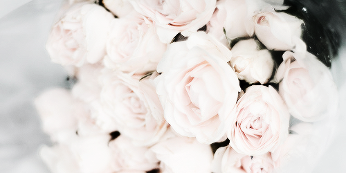 White Flowers Tumblr Background