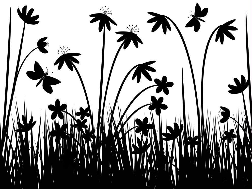 Black and white flowers wallpaper 4 free wallpaper black and white flowers wallpaper 4 free wallpaper mightylinksfo