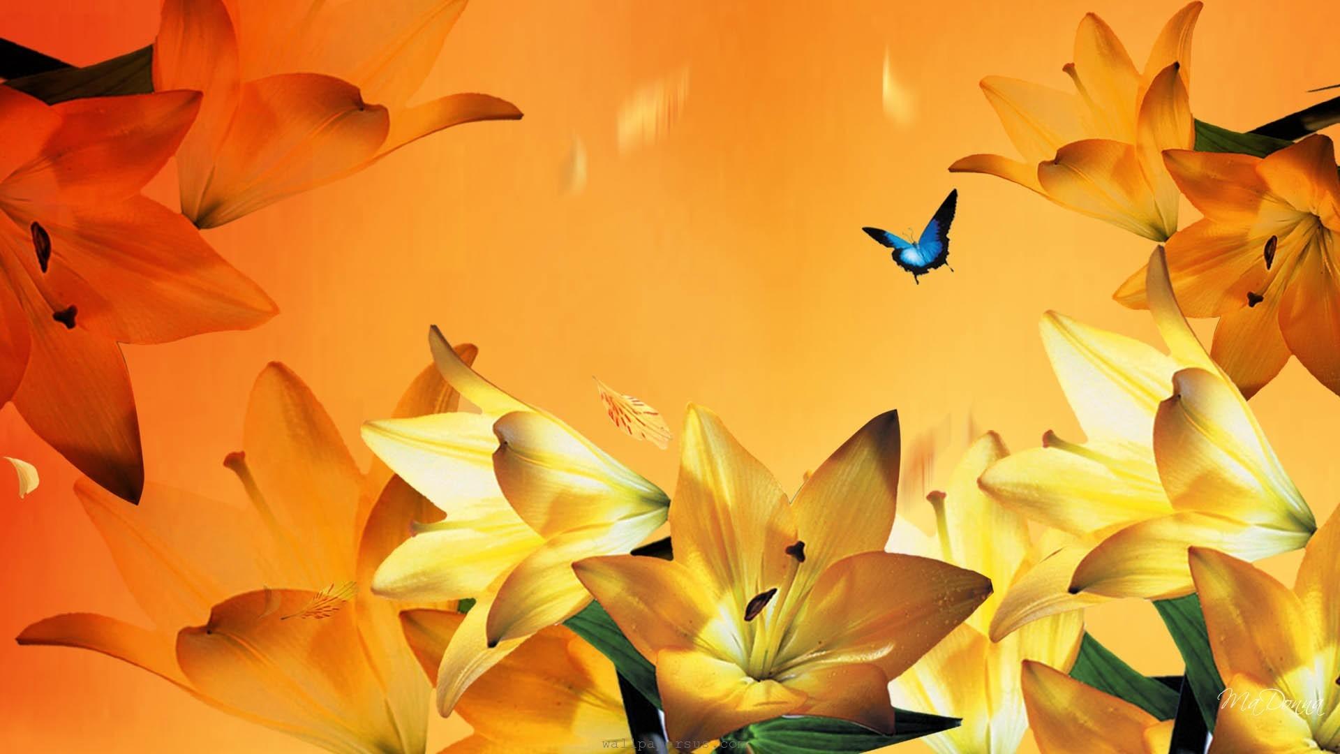 Blue Flowers In Fall 29 Cool Hd Wallpaper Hdflowerwallpaper
