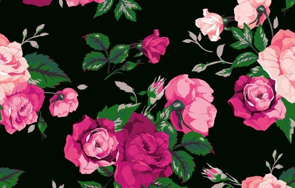 Large print black flowers wallpaper 6 cool wallpaper - Big rose flower wallpaper ...