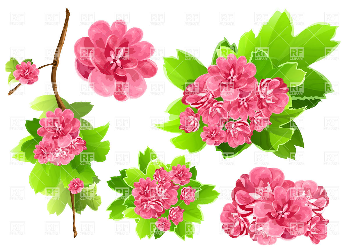Pink flowers clipart 13 desktop background hdflowerwallpaper pink flowers clipart hd wallpaper mightylinksfo Choice Image