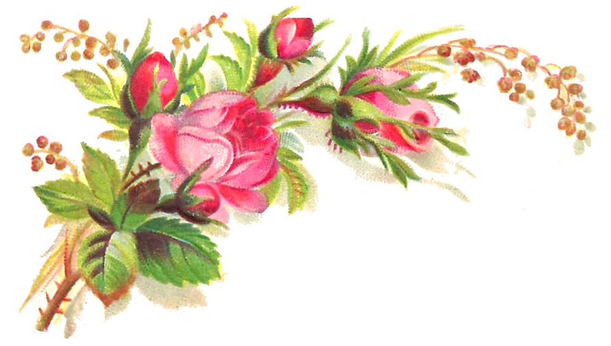 Pink Flowers Clipart Free Wallpaper