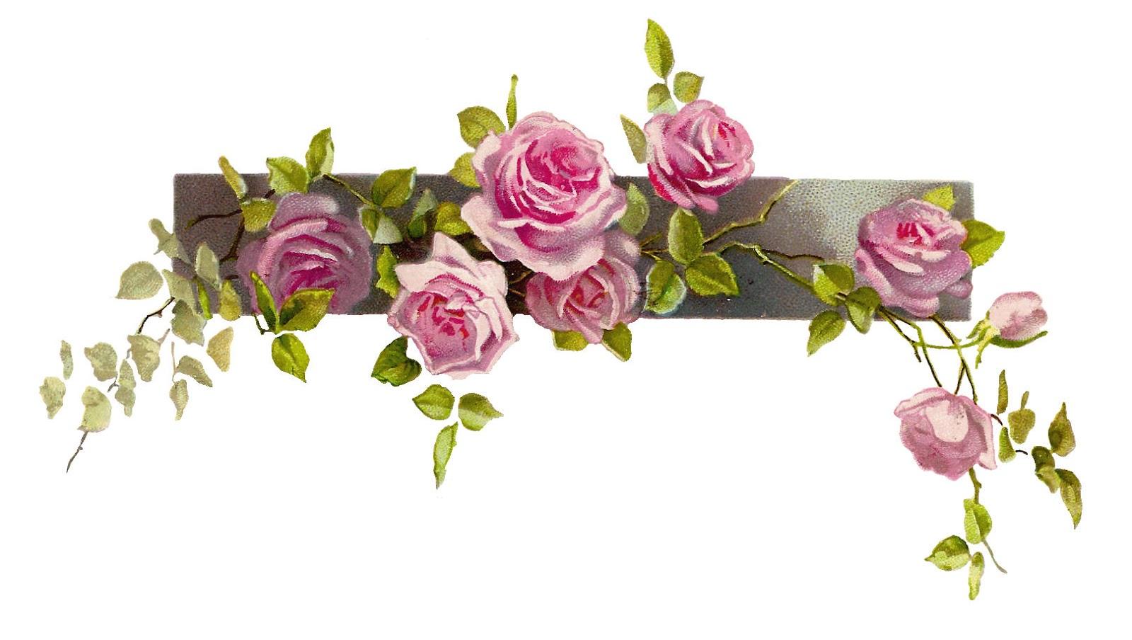 Pink flowers drawing 27 background wallpaper hdflowerwallpaper pink flowers drawing free wallpaper mightylinksfo