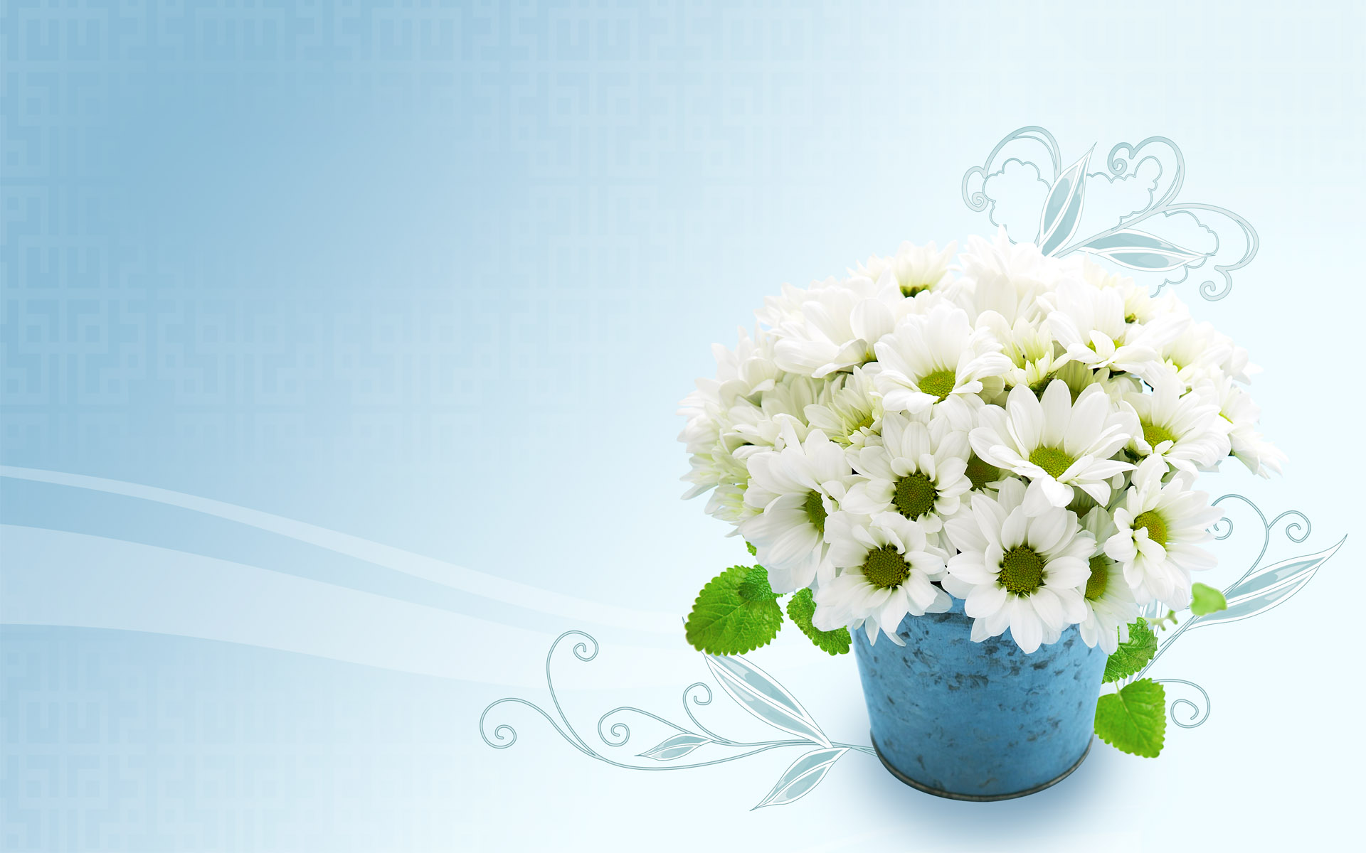 White Flowers Hd Wallpapers 6 Desktop Background ...