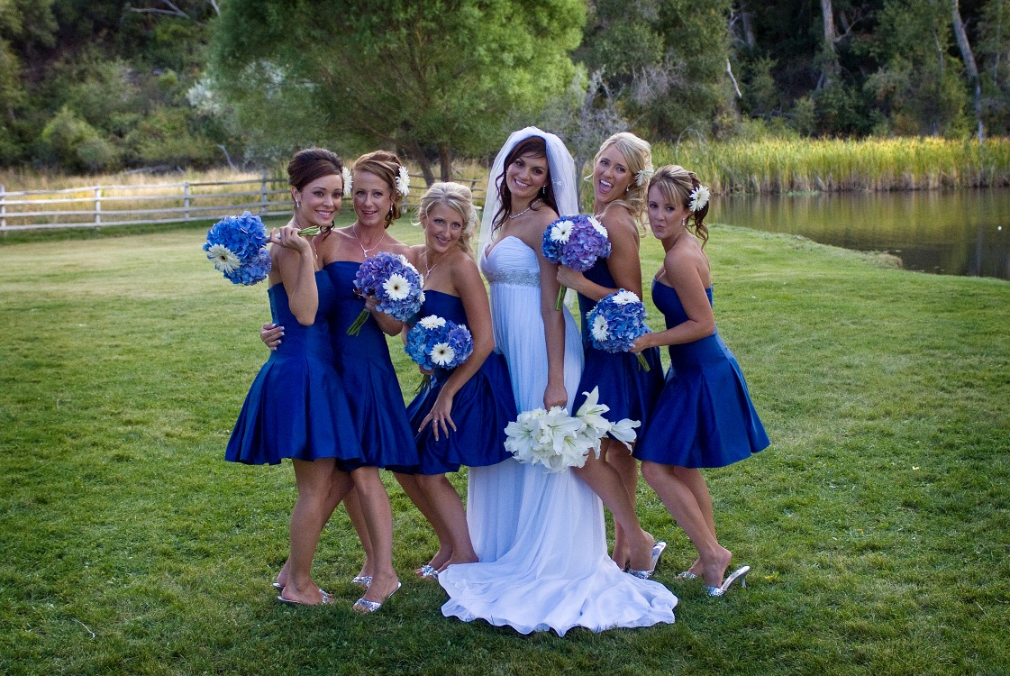 Contemporary Gerbera Flower Wedding Bouquets Images Blue Wedding