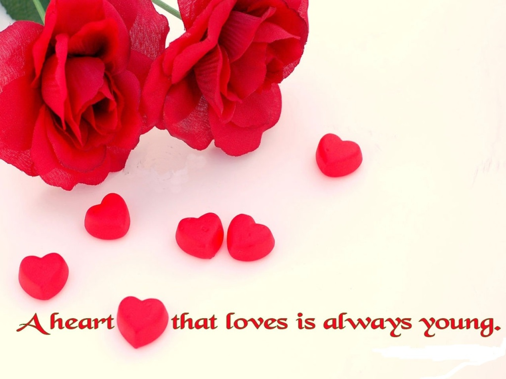 Flower Love Quotes Alluring Flower Wallpaper Quotes 17 Desktop Background  Hdflowerwallpaper