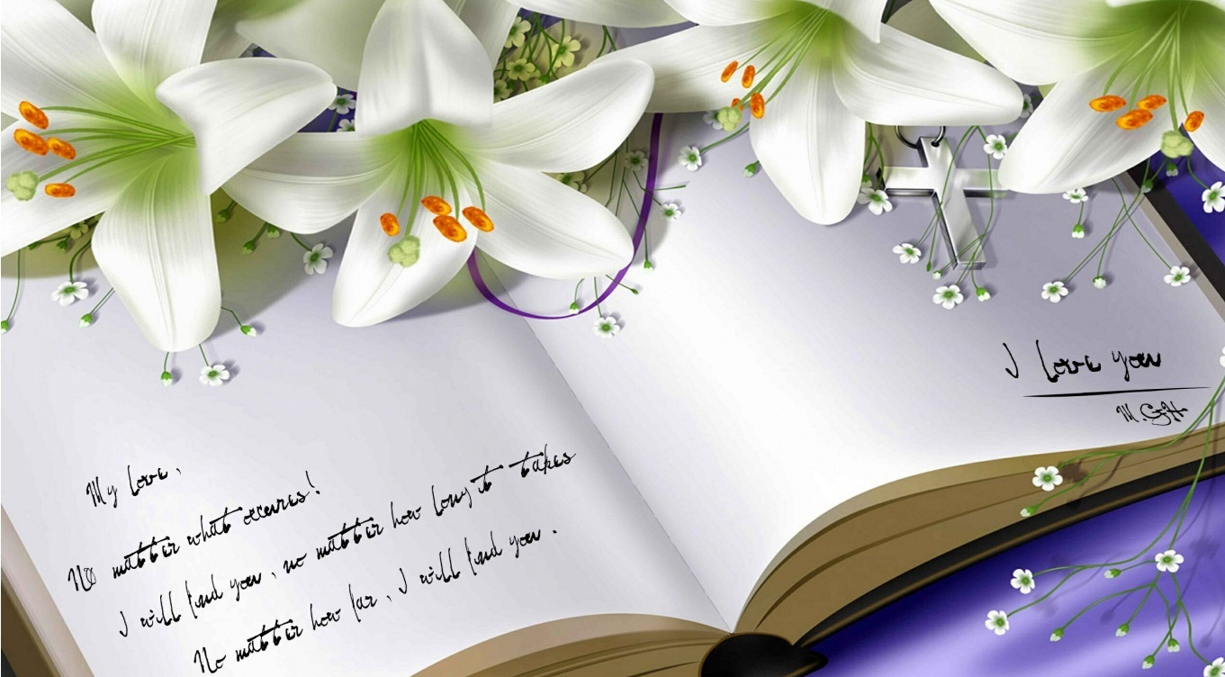 White flowers images with quotes 20 free hd wallpaper white flowers images with quotes background izmirmasajfo Choice Image