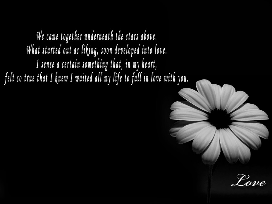 White flowers images with quotes 7 background wallpaper white flowers images with quotes background mightylinksfo