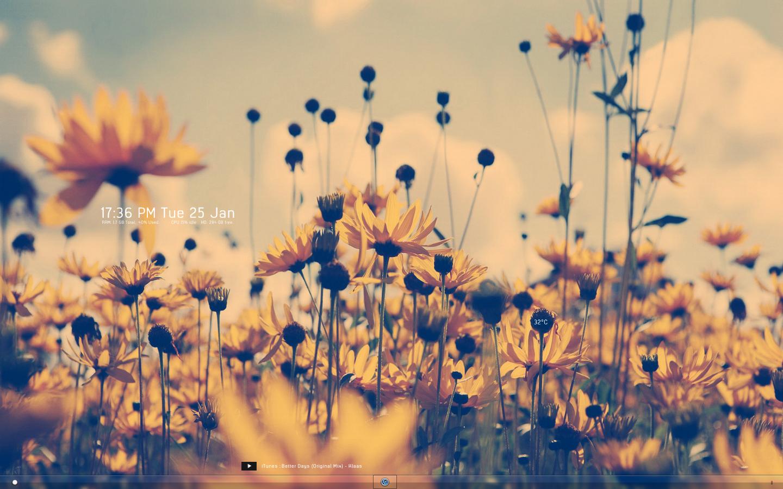Yellow Flowers Tumblr HD Wallpaper