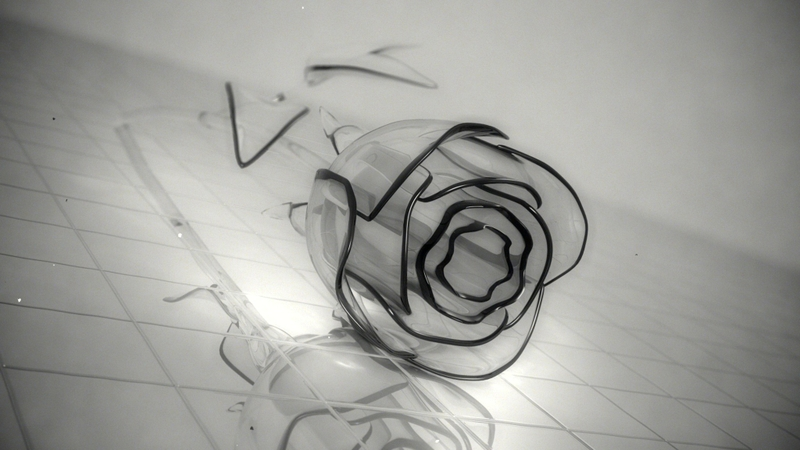 Black And White Rose Wallpaper 11 Cool Wallpaper