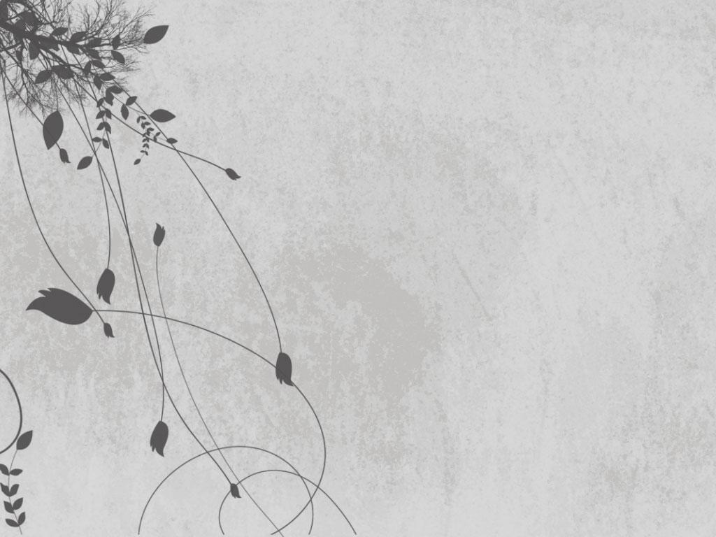 Gray and white flower wallpaper 11 desktop background gray and white flower wallpaper free wallpaper mightylinksfo