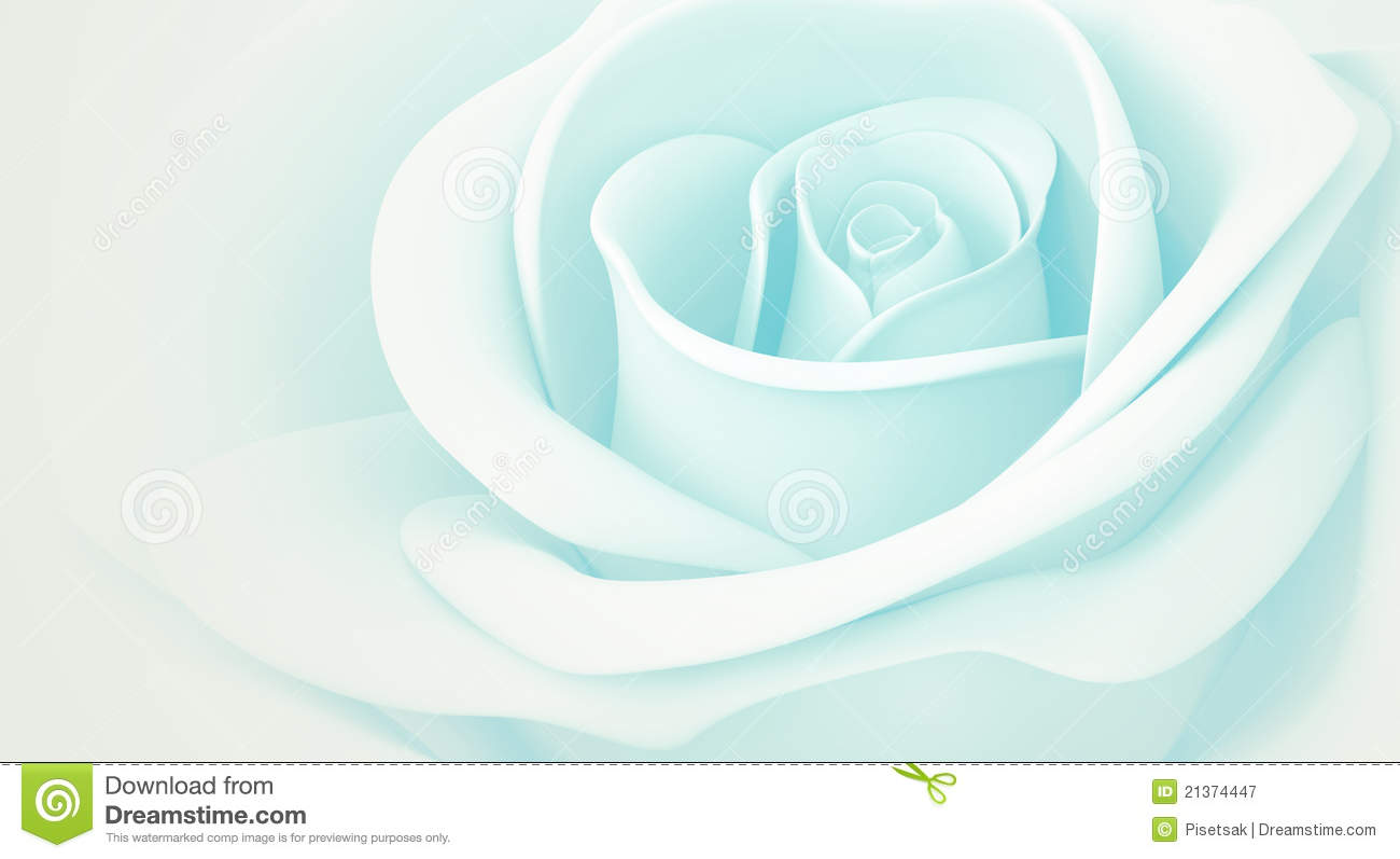 Light Blue Roses Wallpaper 1 Hd Wallpaper ...