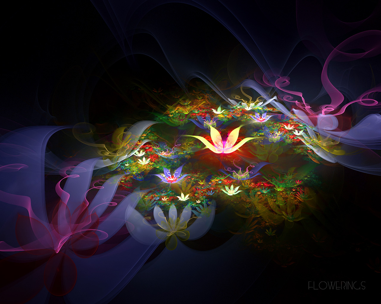 3d flower wallpapers for desktop 21 cool hd wallpaper for Immagini desktop hd 3d
