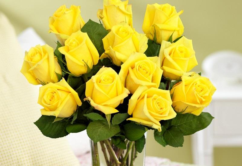 Flower meaning yellow rose 21 wide wallpaper hdflowerwallpaper flower meaning yellow rose hd wallpaper mightylinksfo