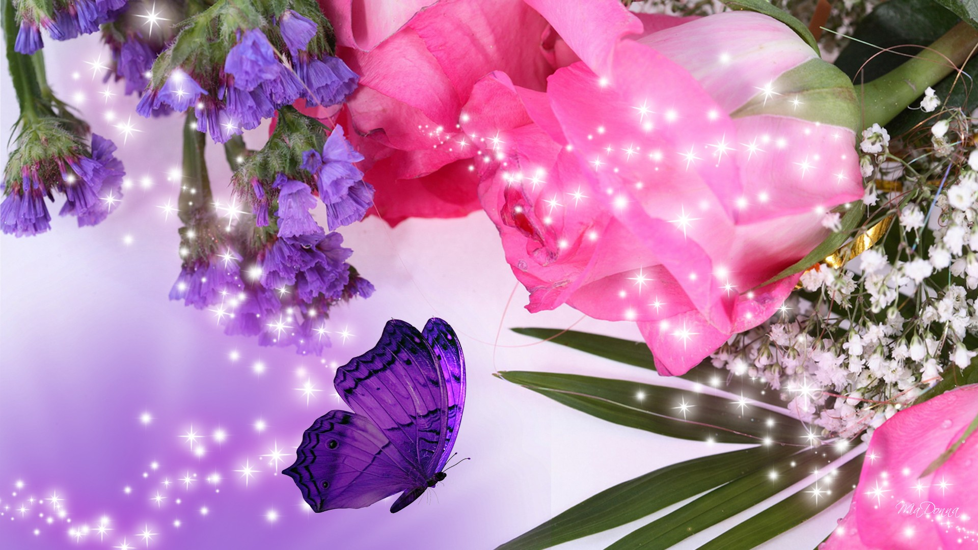 Purple rose flower 12 widescreen wallpaper hdflowerwallpaper purple rose flower widescreen wallpaper voltagebd Gallery