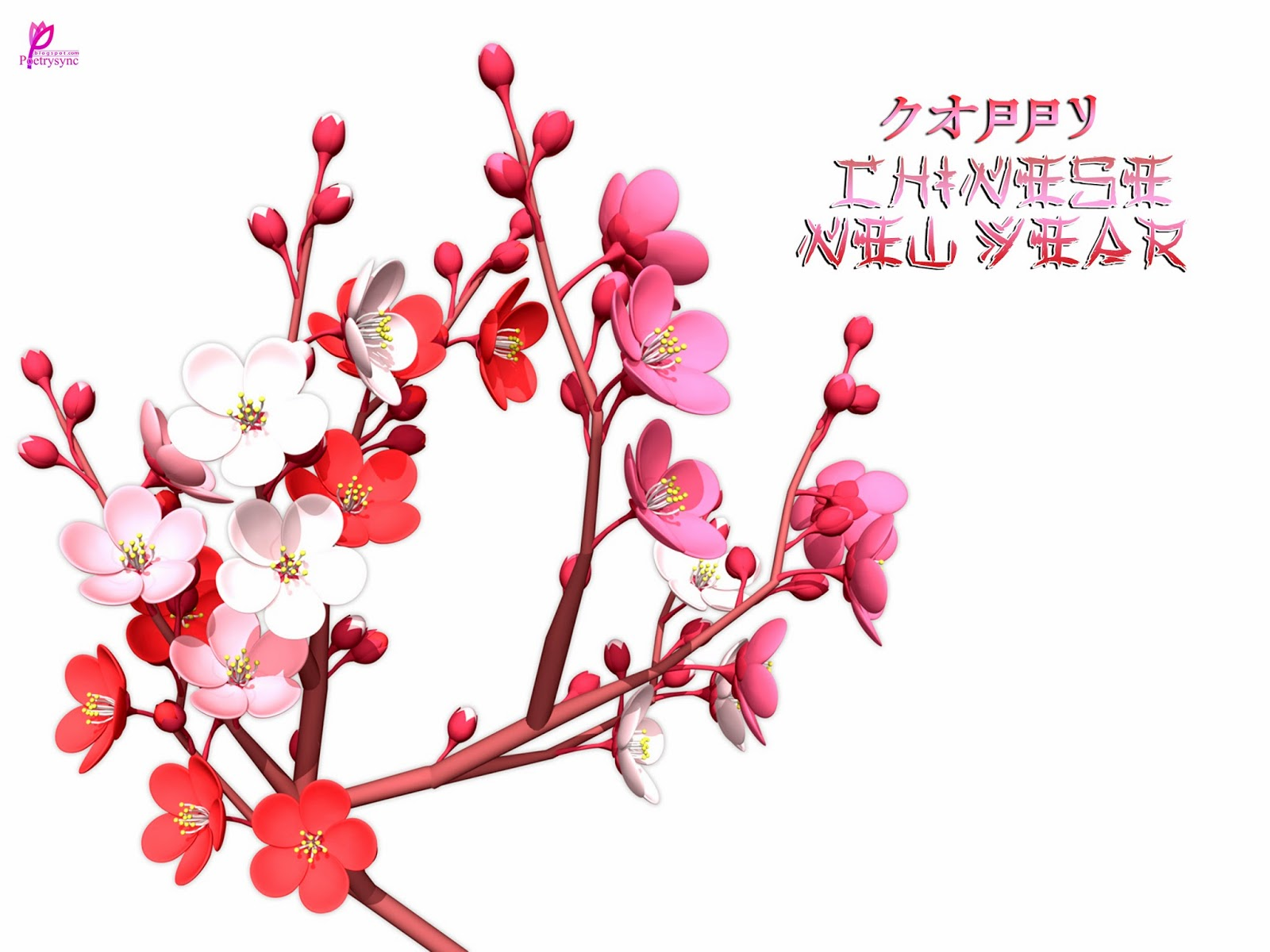 Flower Chinese New Year Wallpaper Flowers Healthy