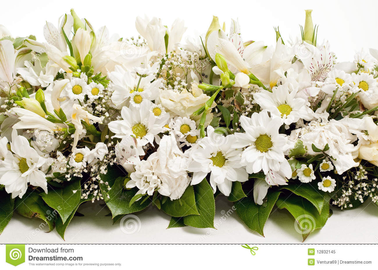 White Flowers Decorations 27 Hd Wallpaper - HdFlowerWallpaper.com