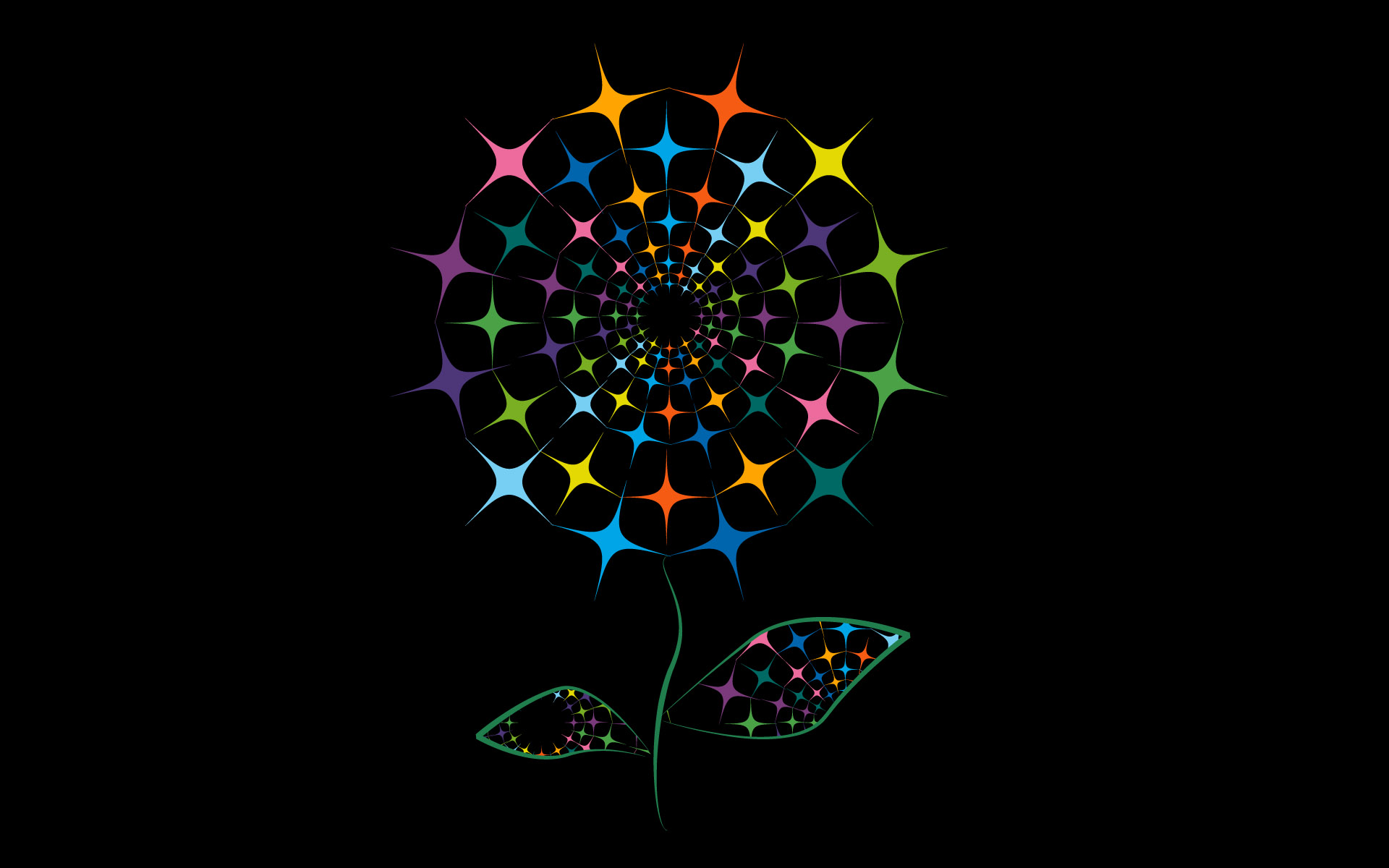 Black Flower Wallpaper 17 Desktop Background
