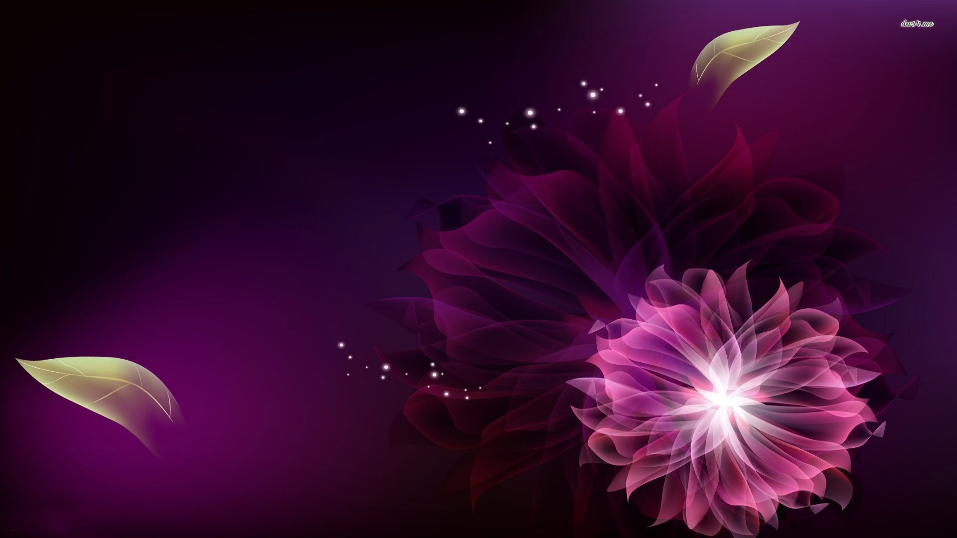Idea Of Life Black Background Pink Flowers Wallpaper